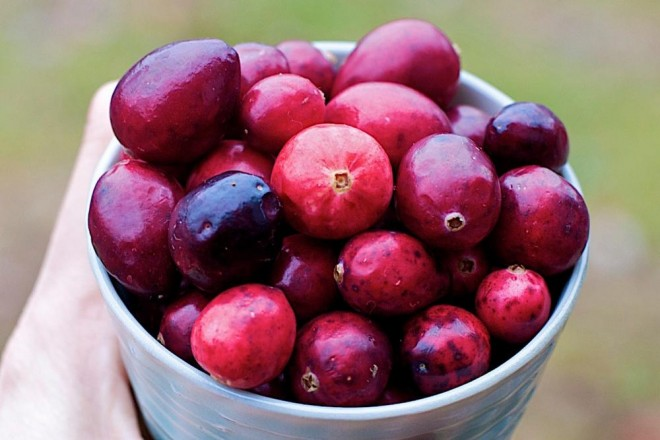 Julie Daniluk, cranberries, cranberry recipes