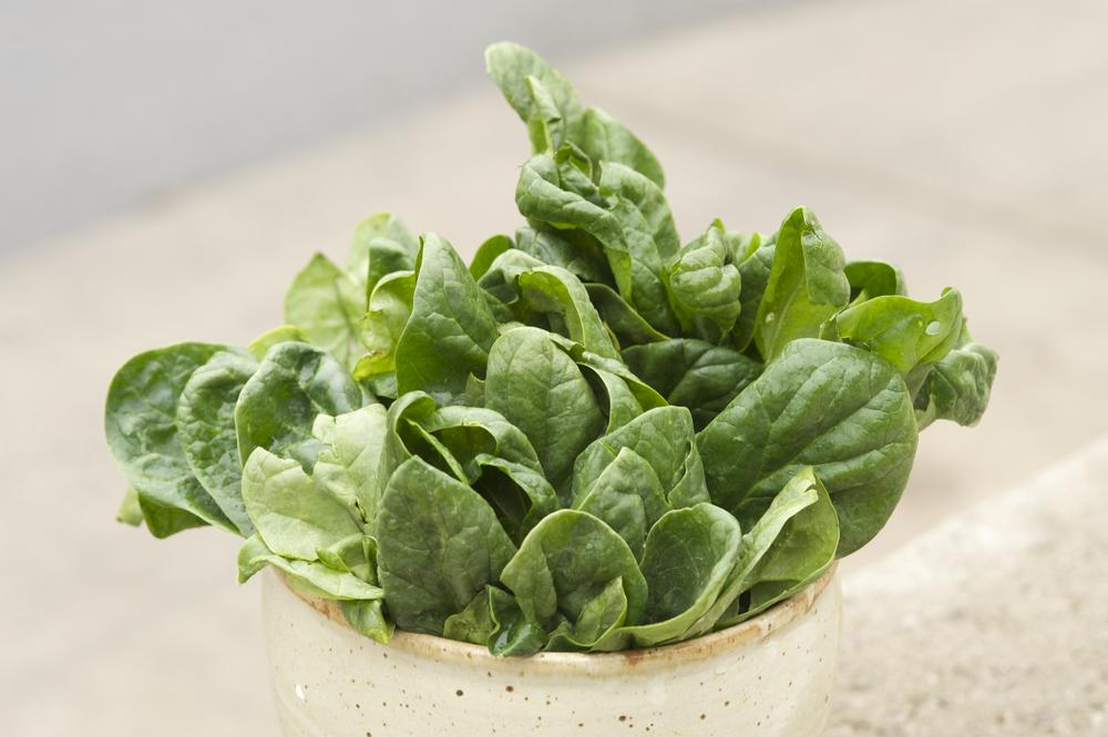Health benefits spinach, recipe with spinach