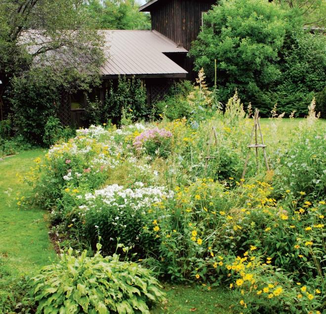 plant species wildlife garden diana beres kroeger - Wild Garden