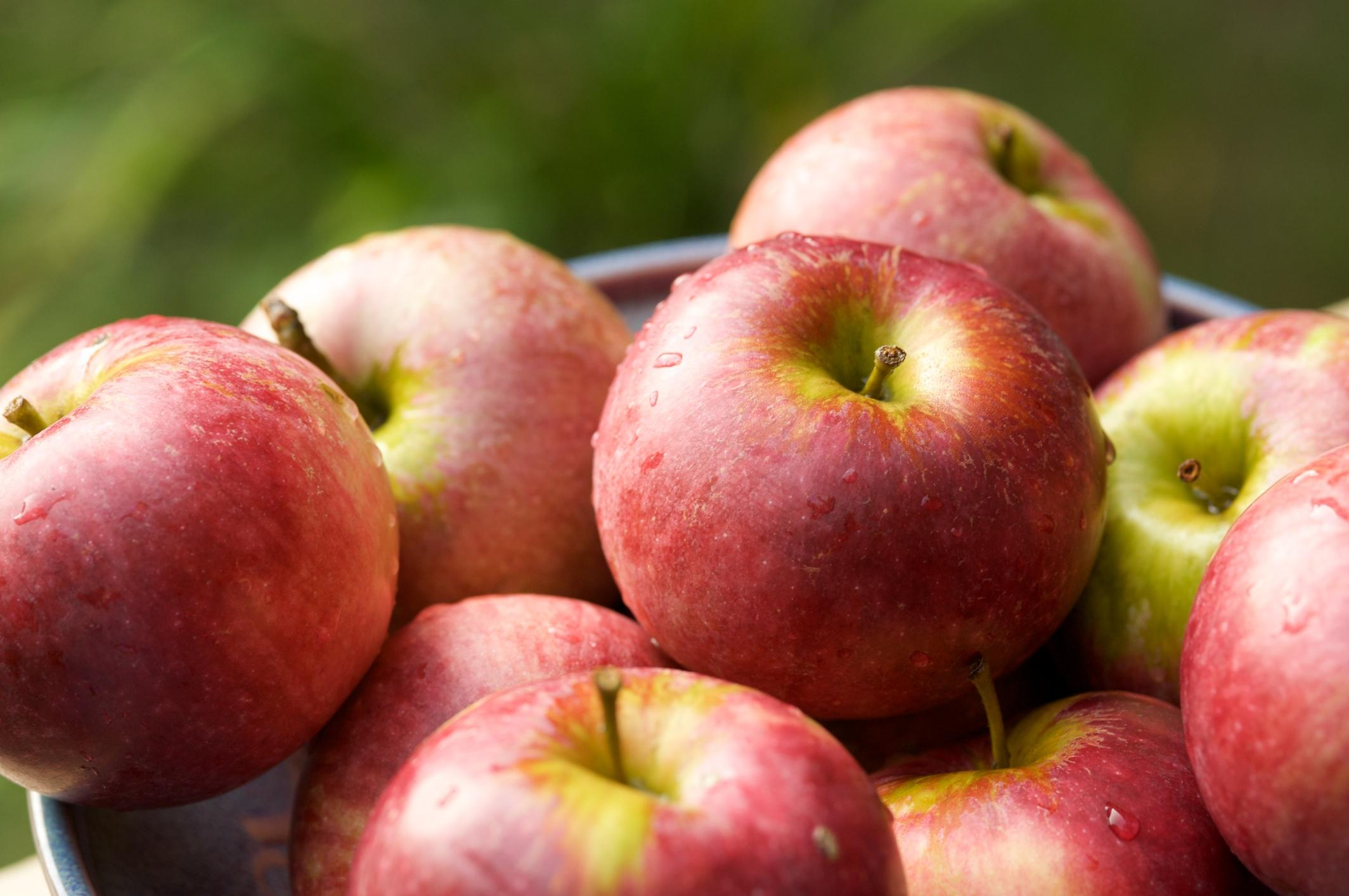 Watch The Top 4 Reasons to Eat Apples video