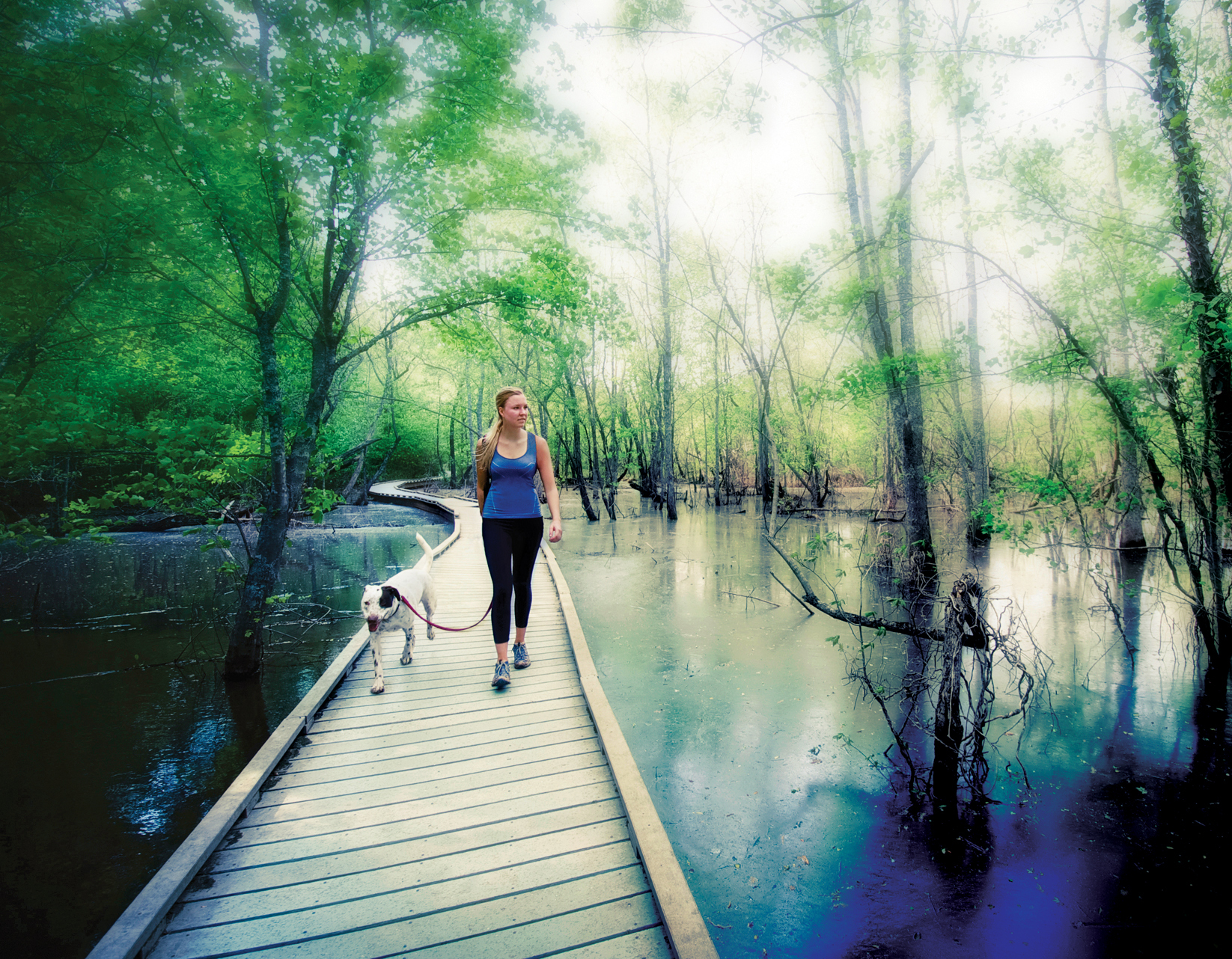 Woman walking dog on boardwalk over water