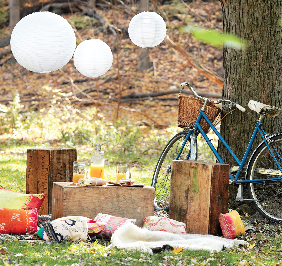 Backyard picnic with bike, crates, blankets, cider, glass jars