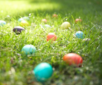 Easter egg hunt in the park