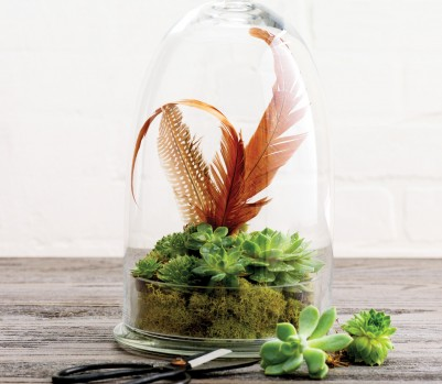 Simple Pleasures Indoor Garden Terrarium April 13 p210