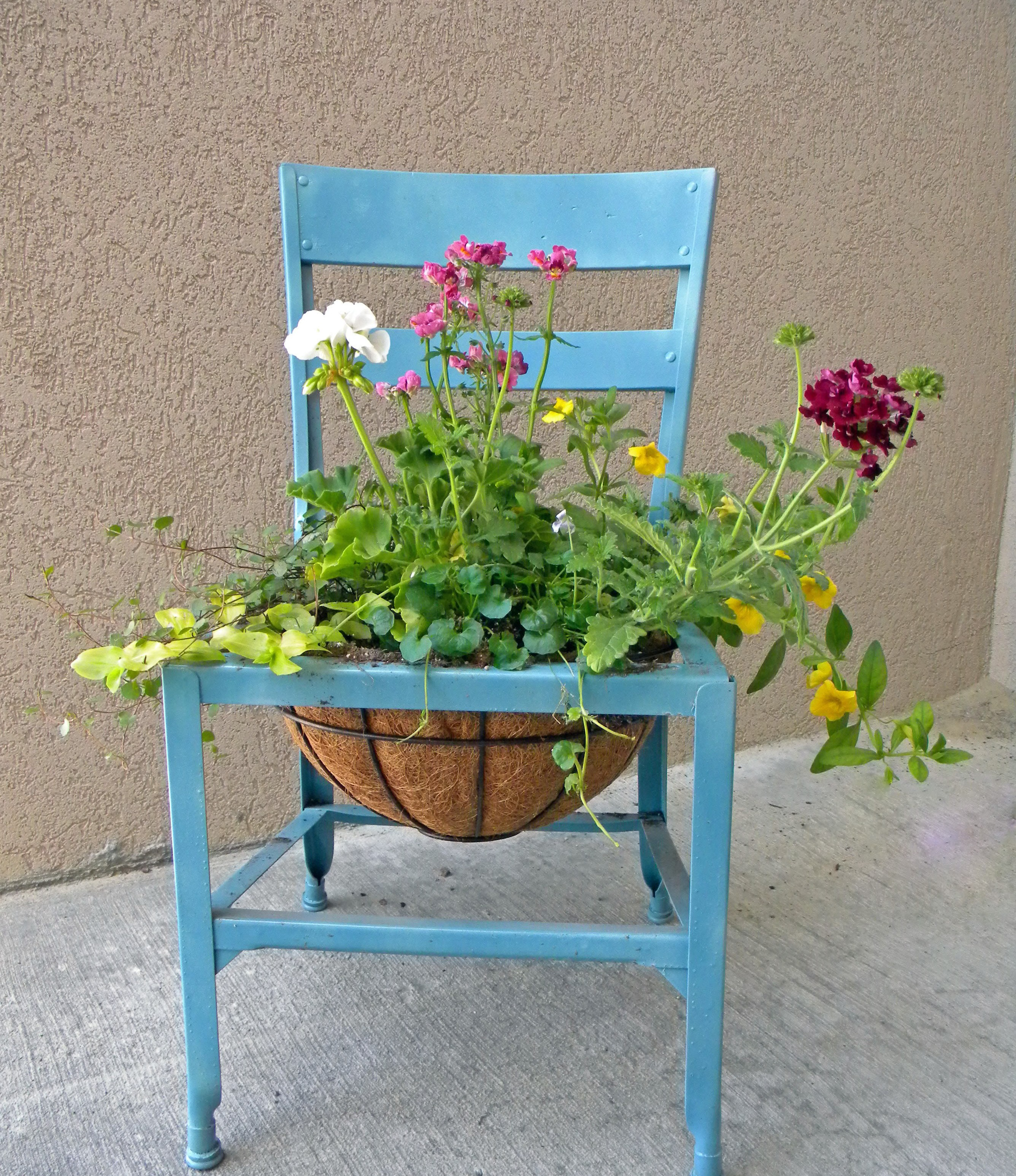Five ways to make a beautiful container garden for spring ...