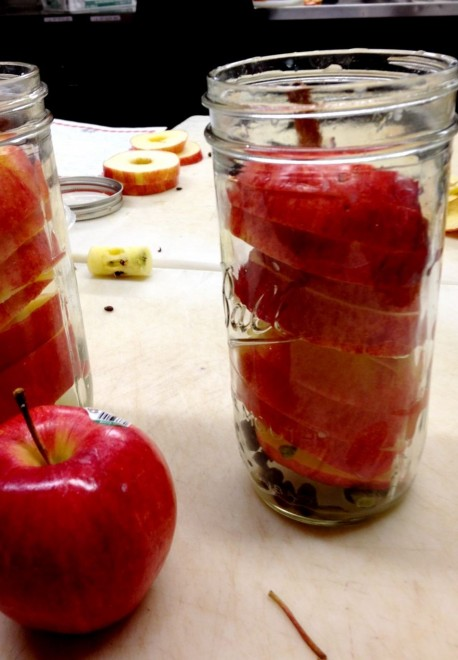 Stacked apple slices with spices in a jar
