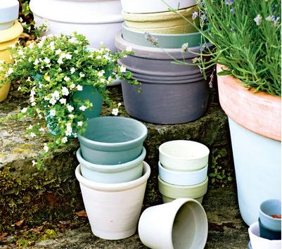 plants-pots