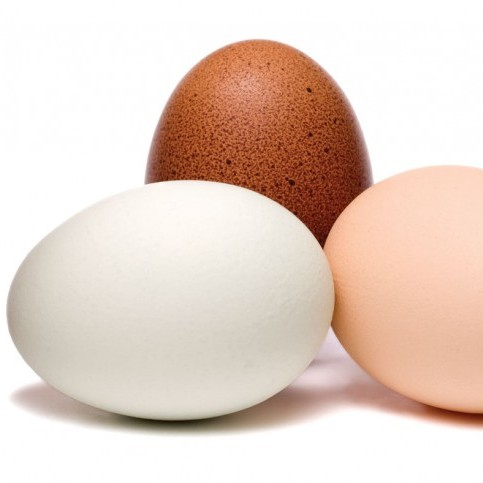 The six types of eggs you're eating, and how they're produced