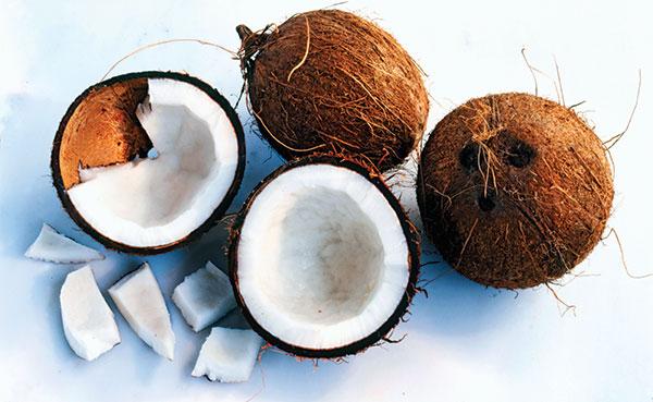 Coconuts-for-coconut-oil