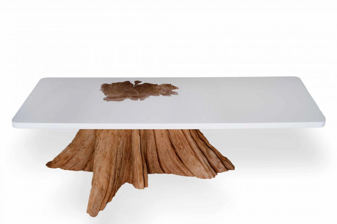 Coffee table with tree trunk MTH Woodwords cedar base