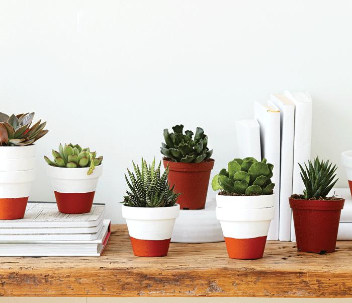 Hand-painted-flower-pots-succulents-garden-planters