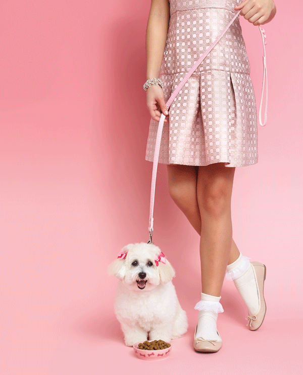 woman-in-pink-Banana-Republic-dress-with-white-poodle-toy-dog fashion