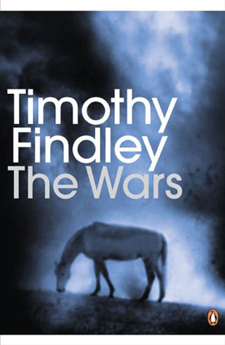 the curiousity that leads from reading the back of timothy findleys novella