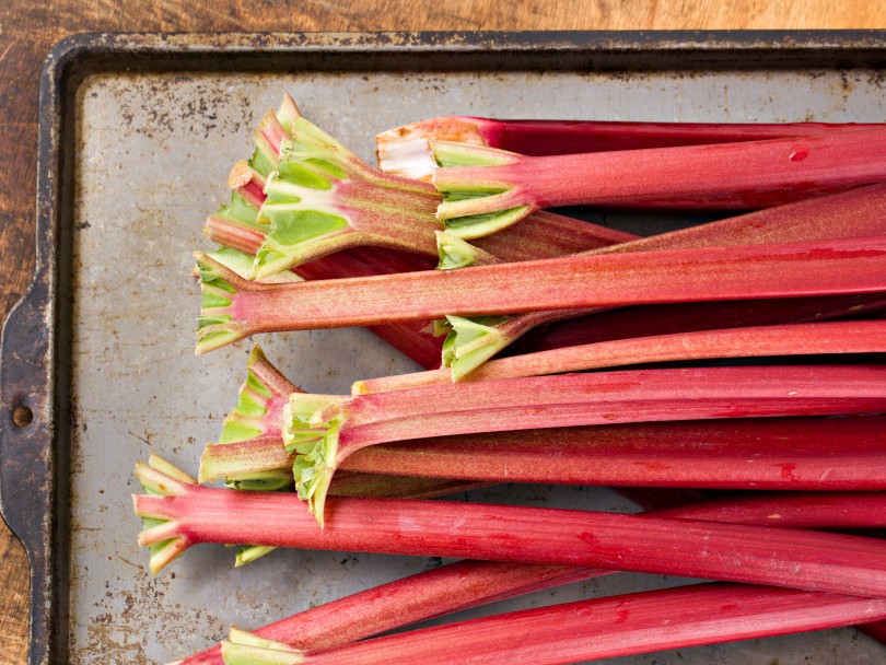 Picture of trimmed rhubarb on a sheet pan for FAQ on the spring vegetable