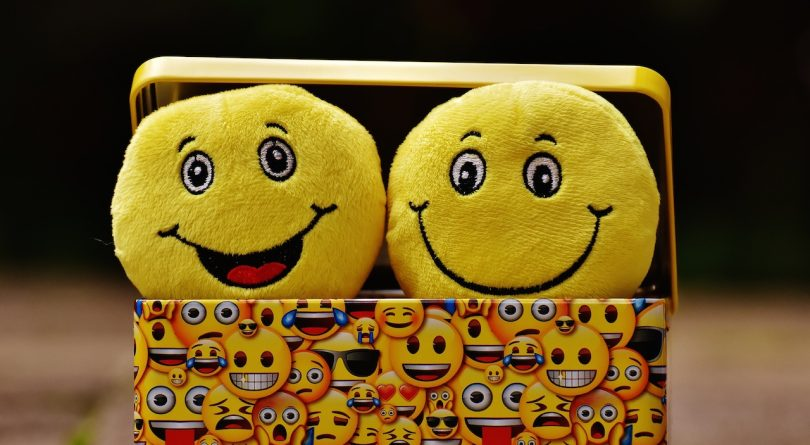 happy marriage-happy plush faces in a happy face tin box