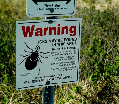 Lyme Disease Is On The Rise — Should You Be Worried?
