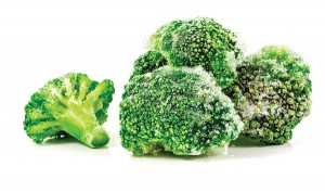 Image of green frozen broccoli isolated close up