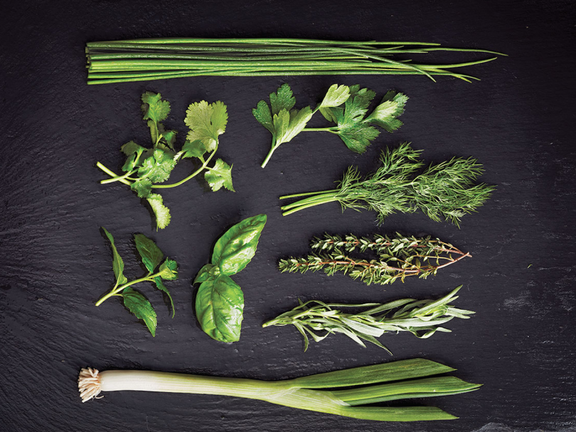 How to keep herbs green: chives, cilantro, parsley, dilll, thyme, basil, mint, tarragon and green onion on a black board