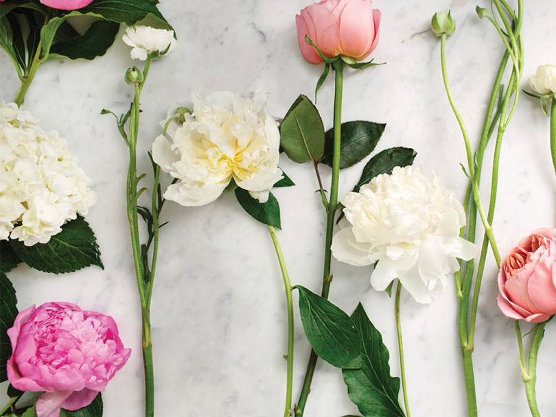Pink and white peonies with roses