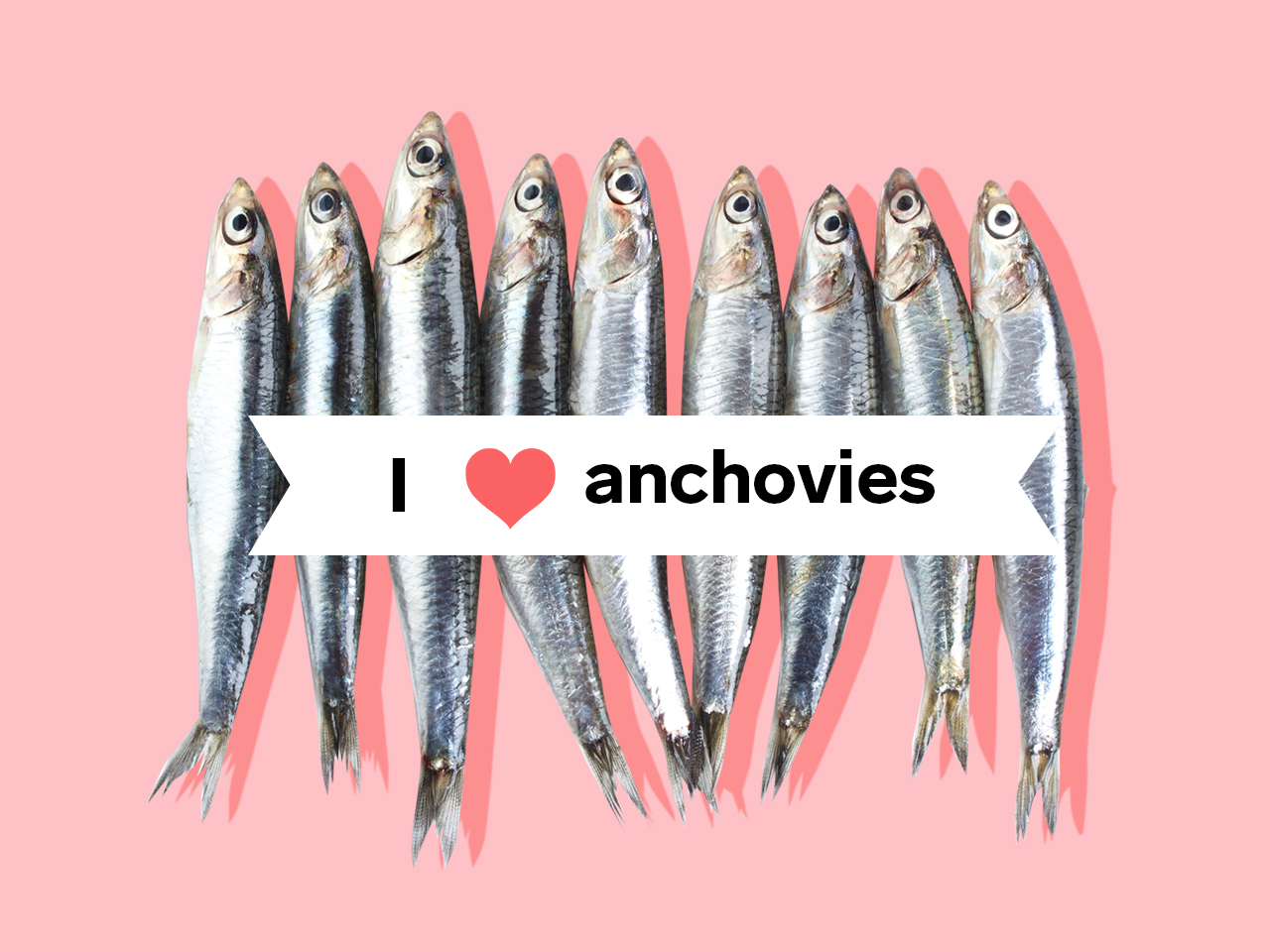 Anchovies lined up in a row with banner stating I (heart) anchovies across