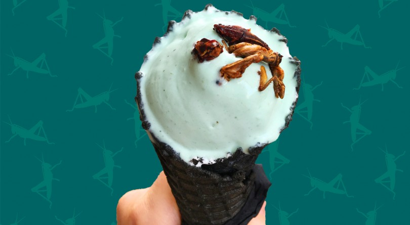 Green ice cream topped with crickets and grasshoppers in a black cone.