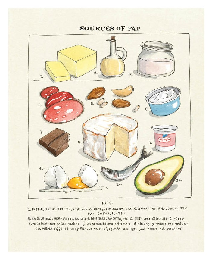Sources of Fat Illustrations from Salt, Fat, Acid, Heat by Samin Nosrat