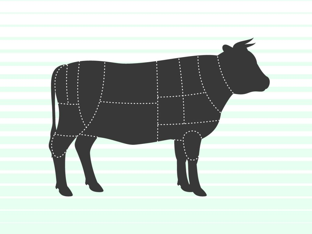 cow illustration with beef sections