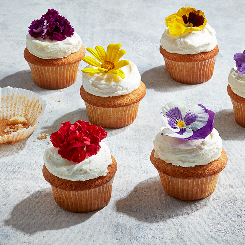 Lemon-elderflower cupcakes