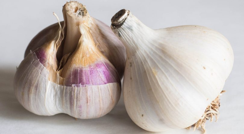 Two garlic bulbs