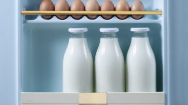 Expiry dates: 3 bottles of milk and brown eggs in retro fridge door