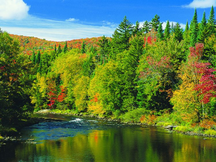 The Laurentian Mountains