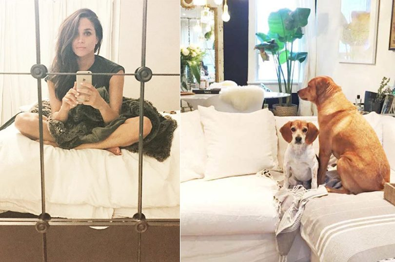 Meghan Markle Home Décor-feature image shows two images side by side: one of meghan taking a selfie in a mirror, the other of two dogs sitting on a white couch