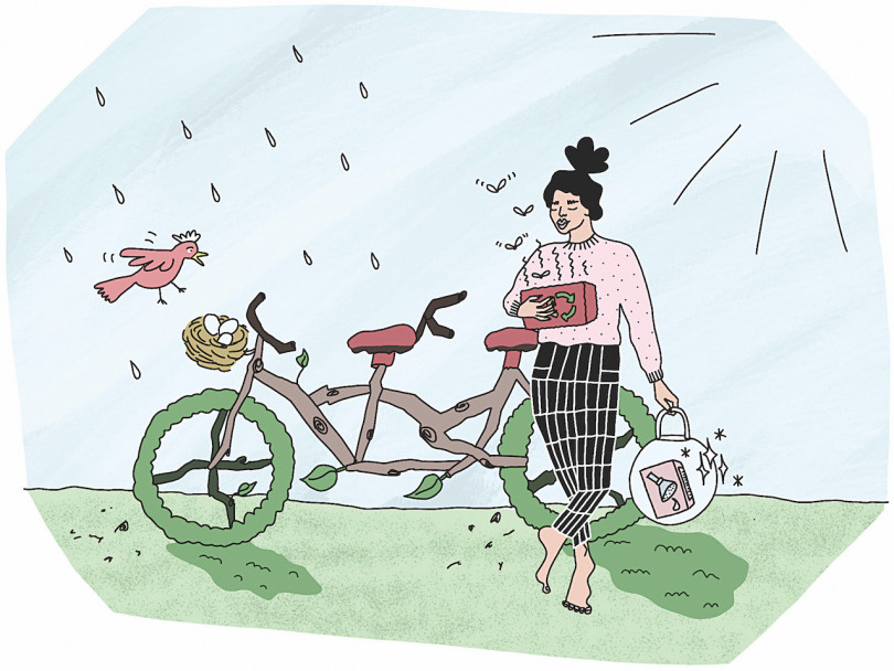 Illustration of fake environmentally friendly products like a bicycle made out dehydrated vegetables.