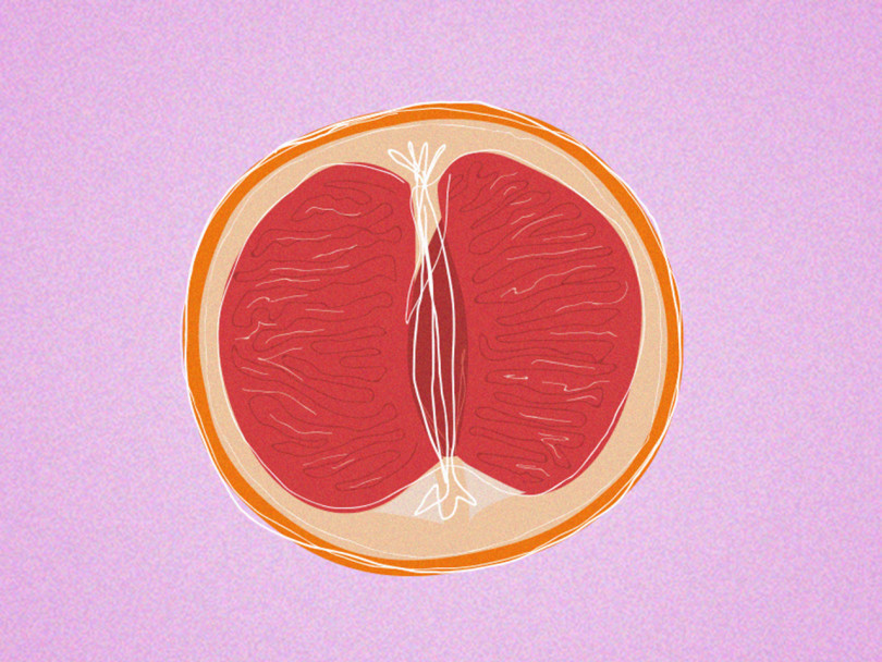 normal labia size vagina article: an illustration of half a pink grapefruit against a lavender background