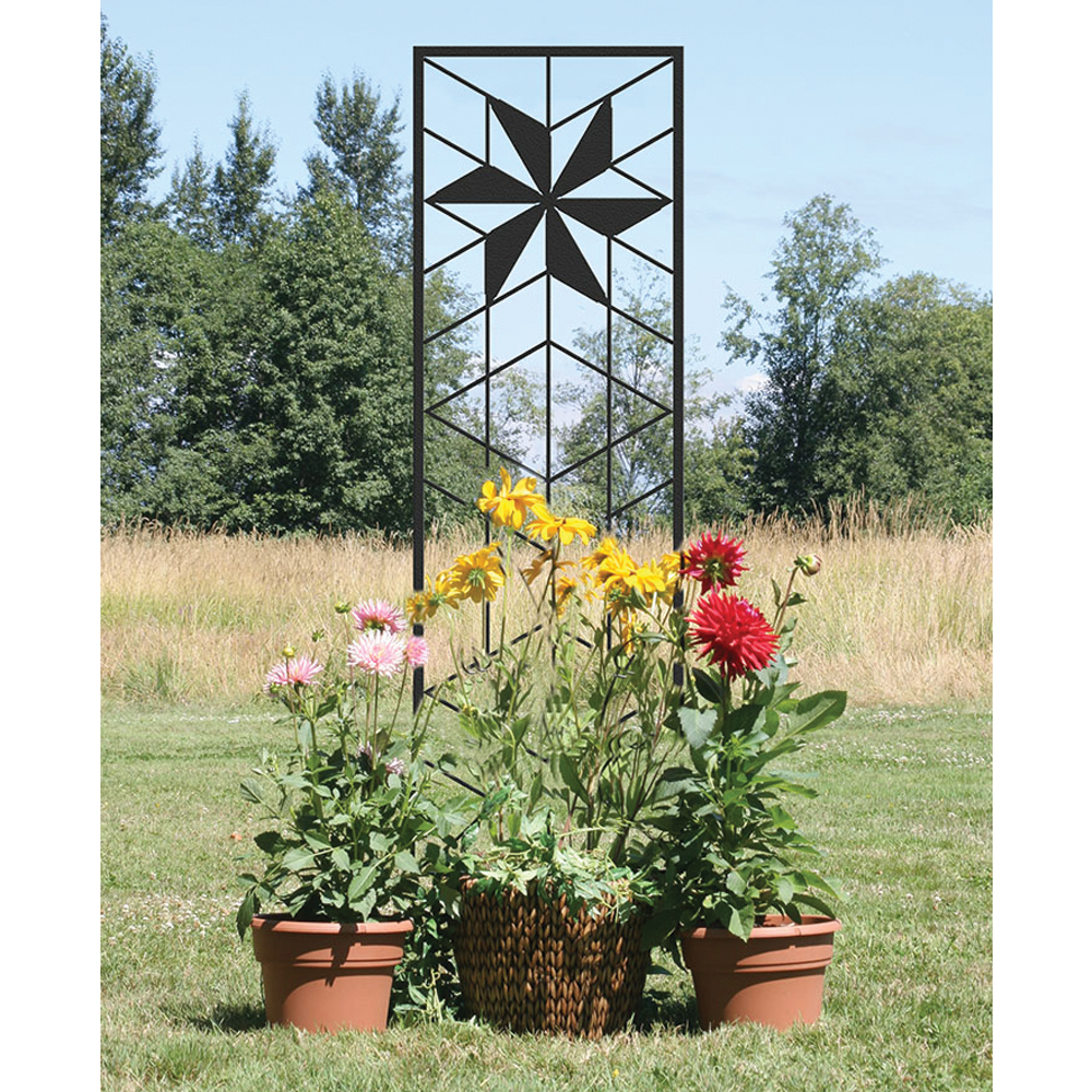 backyard privacy-HomeDepot trellis provides a place for plants to grow and block the view