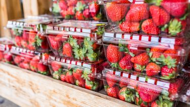 reuse single-use plastics: closeup of many strawberries in plastic clamshell boxes on display in wooden crate