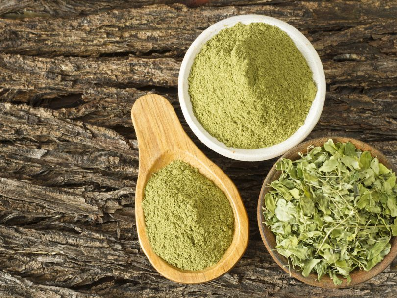 leaves and moringa powder, super food and natural medicine, Moringa oleifera.