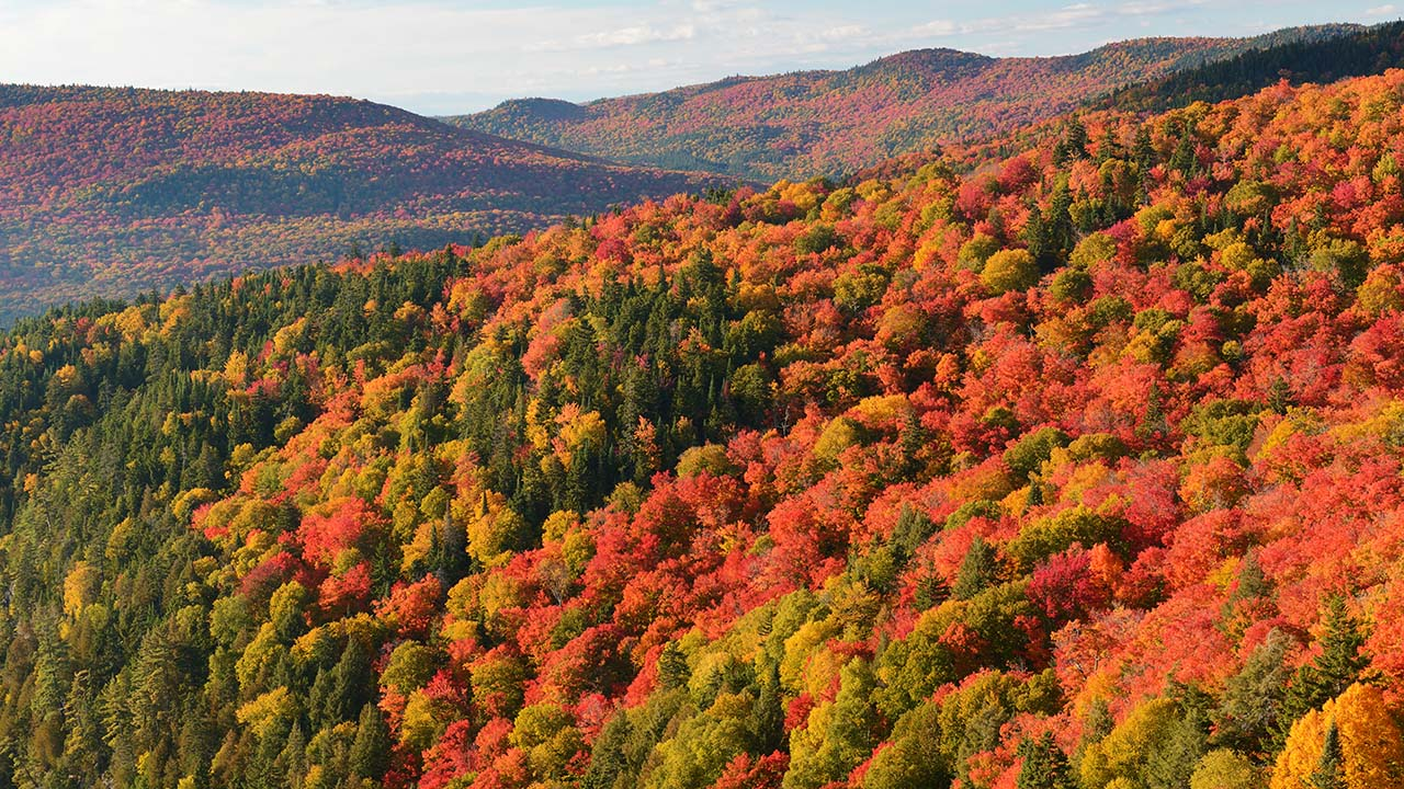 The Laurentian Mountains in fall. Environment Canada is predicting gorgeous fall colours in Quebec and Ontario this year (Photo: iStock)