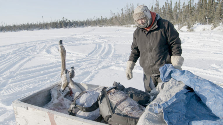 Kyle Linklater packing a hunted caribou onto a sled near Peawanuck, ON, December 16, 2019. (Courtesy of Daron Donahue/ Human Rights Watch)