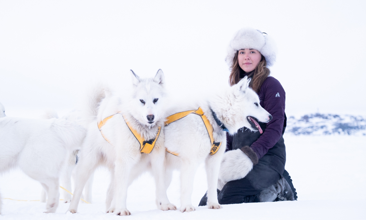 a woman in a parka and fur hat sits on a snowy field with three husky dogs
