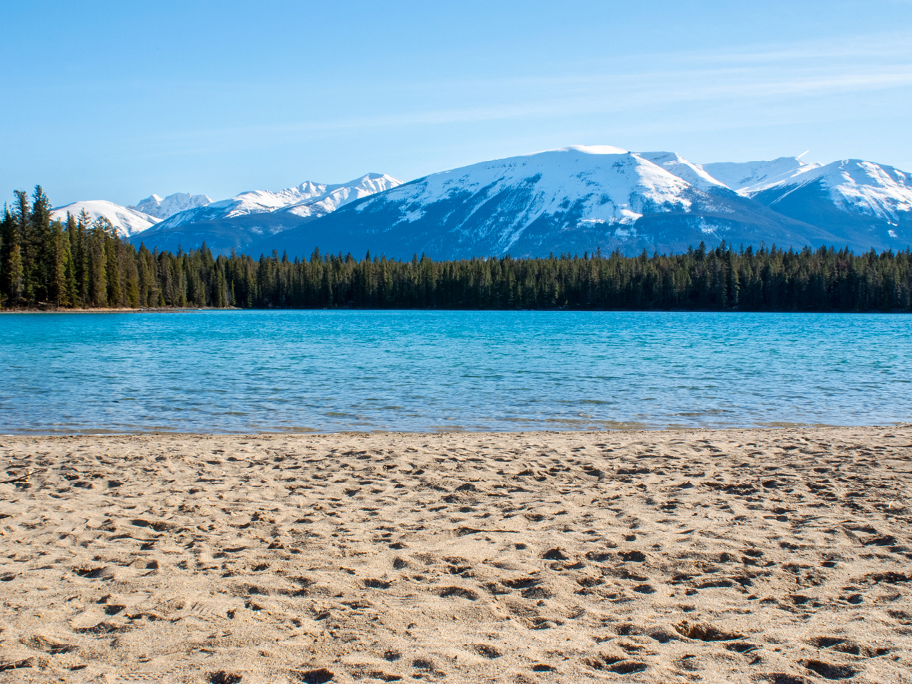 Beach and lakeside, in the distance: forestry and snowy mountain tops