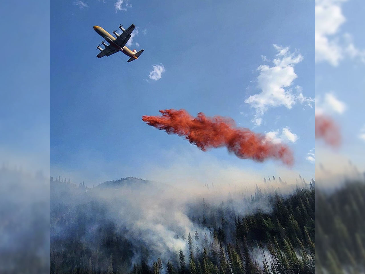 A photo of a plane dropping a stream of red fire retardant onto a forest